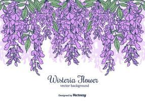 Hand Drawn Wisteria blomma Vector Bakgrund