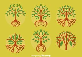 Stora träd med rötter vektorer