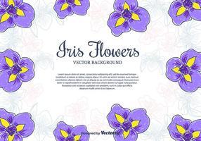 Iris Blommor Vector Bakgrund