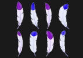 Set av Pluma Vektorer