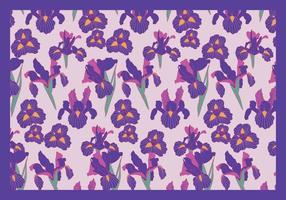 Iris Blommor lila Vector