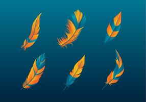 Pluma Orange Blue Gratis Vector