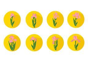 Freie Iris-Blumen-Icons Vector