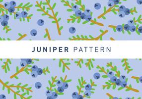 Juniper Muster Tapete Vektor