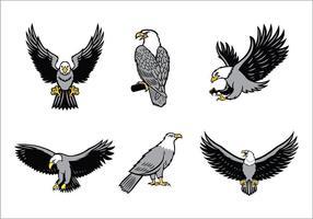 Eagles Mascot Vector Set