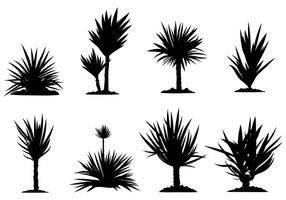 Freie Yucca Icons Vector