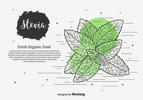 Hand gezeichnet Stevia Vektor Hintergrund