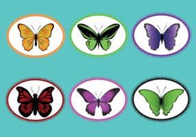 Mariposa Vector Pack
