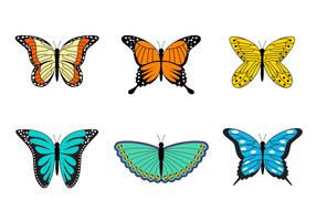 Sammlung von Mariposa Vektor