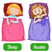 entgegengesetzte Wörter mit wach und schlafen vektor