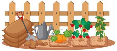 grönsaker som växer i trädgården på vit bakgrund vektor