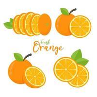 Orangenfruchtset vektor