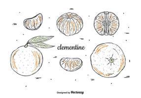 Handgezeichnetes Clementine Vektor Set