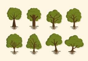 Plana trädvektorer vektor