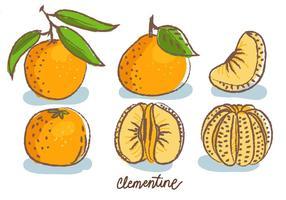 Clementine Gekritzel Skizze Vektor-Illustration