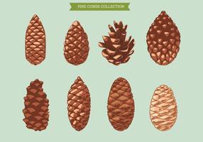 Set von Pine Cone auf grünem Hintergrund vektor