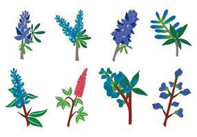 Free Bluebonnet Blumen Vektor