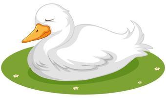 süße Ente, die auf Gras schläft vektor
