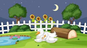 söt anka som sover på gräs