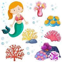 uppsättning söt sjöjungfru och havstema vektor