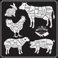 Tierfarm Set vektor