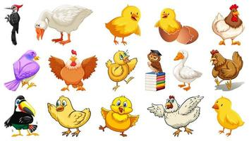 Satz verschiedene Vogelkarikaturart lokalisiert auf weißem Hintergrund
