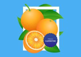 Free Clementine Vektor Hintergrund