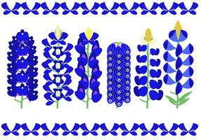 Vacker Bluebonnet Flower Vector
