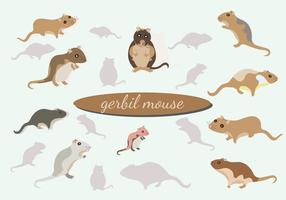 Gerbil Maus Vektor Pack