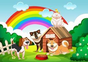 hundgrupp och en katt i trädgården med regnbågescenen