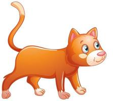 en söt orange katt på vit bakgrund vektor