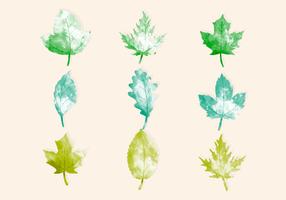Vektor Aquarell Blätter