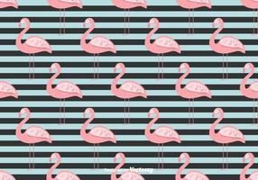 Sommar Flamingo Vector Bakgrund