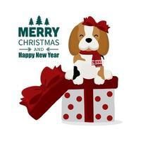 Weihnachtsbeagle mit Schleife und Schal auf Geschenkbox