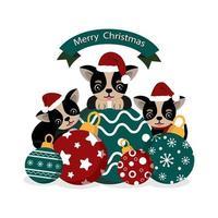 süße Chihuahua in Weihnachtsmütze mit Weihnachtsschmuck