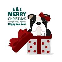 Weihnachtsentwurf mit lustigem Bulldog in Geschenkbox vektor