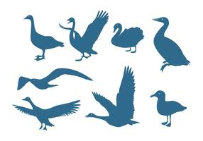 Aquatic Birds Silhouettes