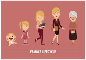Freier weiblicher Lebenszyklus-Vektor