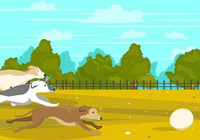 Whippet hund spelar boll i parken
