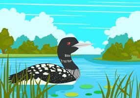 Loon Vogel In den See