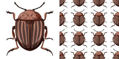 Colorado Käfer Insekt und nahtloser Hintergrund vektor