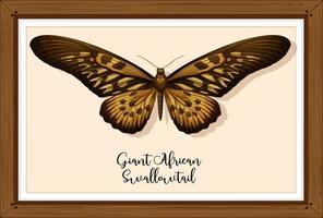 Schmetterling auf Holzrahmen vektor