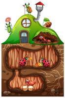scen med insekter i det underjordiska hålet