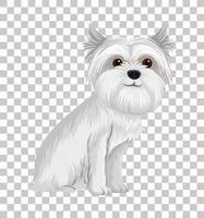 weißer australischer Terrier in sitzender Position Zeichentrickfigur lokalisiert auf transparentem Hintergrund