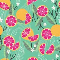 frukt seamless mönster, grapefrukt med grenar vektor