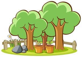 isoliertes Bild von Bäumen im Park vektor
