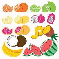 samling av exotisk tropisk frukt på vit bakgrund.