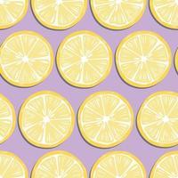 frukt seamless mönster, citronskivor med skugga vektor