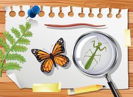Schmetterling mit Gottesanbeterin und Lupe auf Tischnahaufnahme