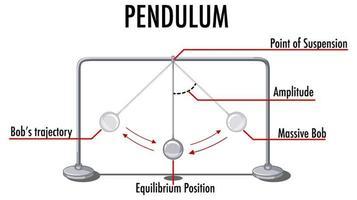 Pendel Bewegung Infografik für Physikunterricht vektor